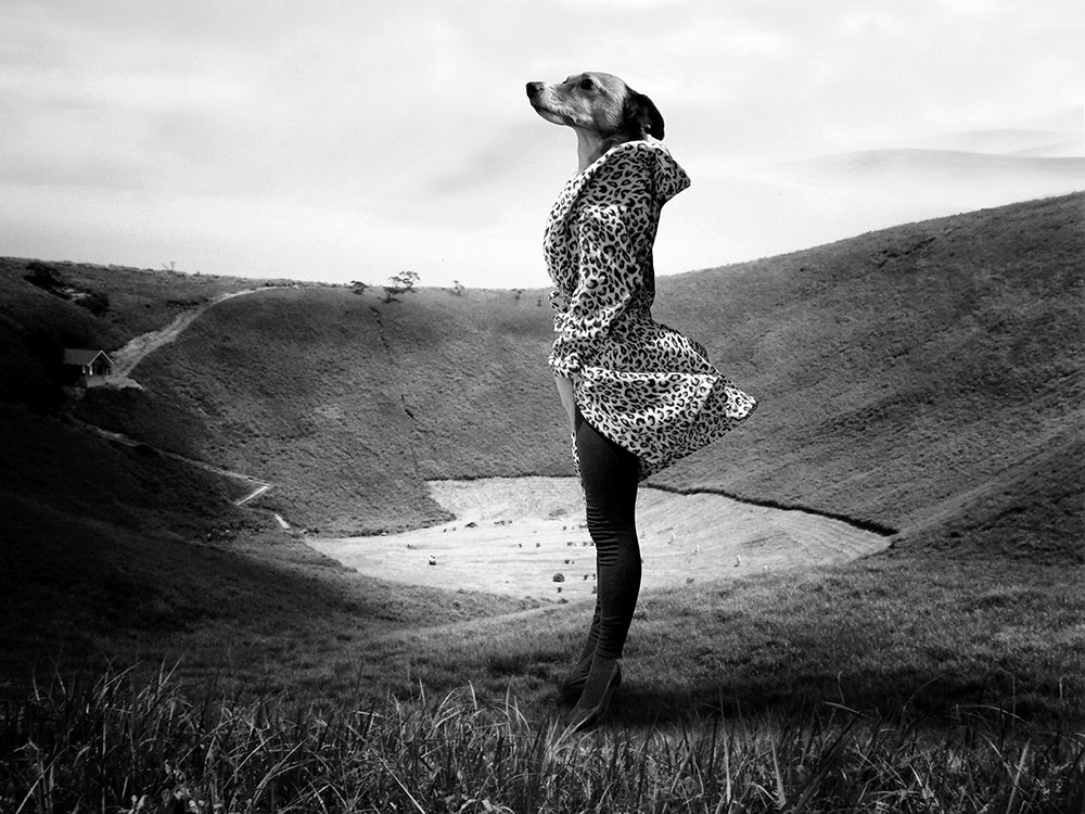 Julia Murakami, Exercises in Levitation III, 2015 (series) Photo print under acrylic glass mounted on Alu-dibond, 60 x 80 cm, Edition of 5 (+ 2 AP), signed and dated on the back